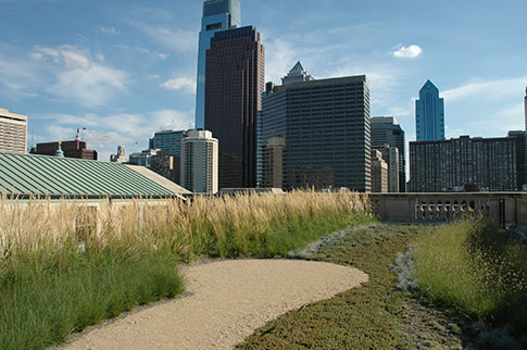 The Philadelphia skyline frames a stormwater-fighting green roof on the Free Library of Philadelphia. Our city is leading the way on green infrastructure. Credit: Philadelphia Water.