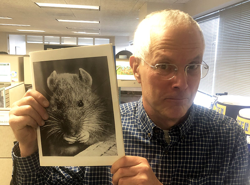 Photo of Adam Levine, PWD historian, wide-eyed and with lips pursed, holding up a copy of the 1971 Rat Control Report, featuring a large black and white close-up photo of a rat.